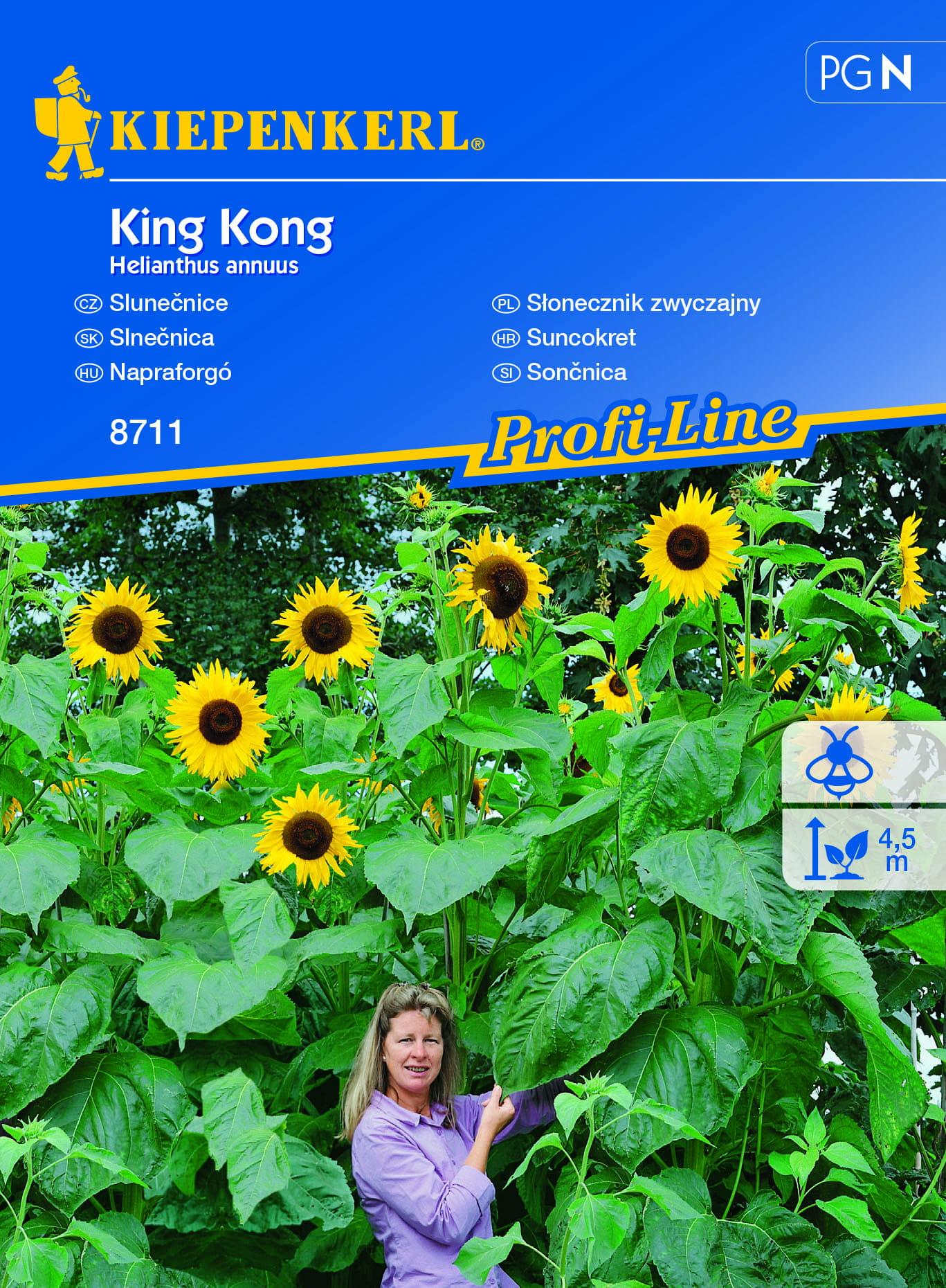 Słonecznik zwyczajny 'King Kong'